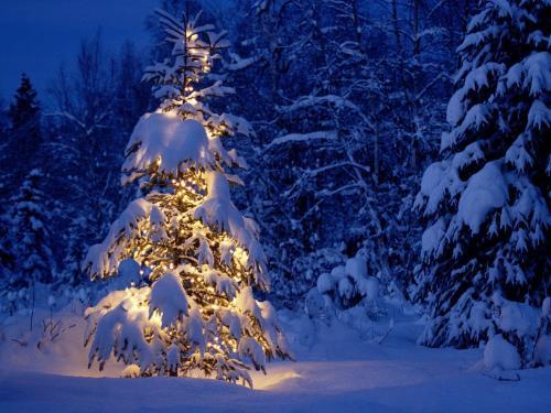 Craciun Peisaje de Iarna Zapada Peste Brazi